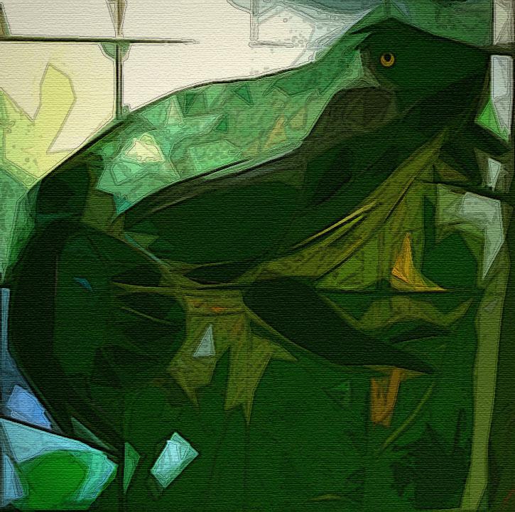 Frog Window