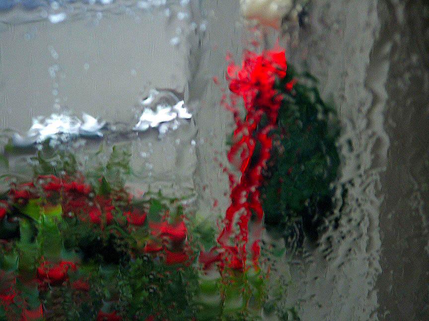 Christmas_rain