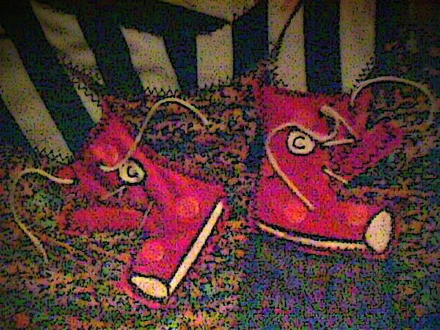 kashari_shoes