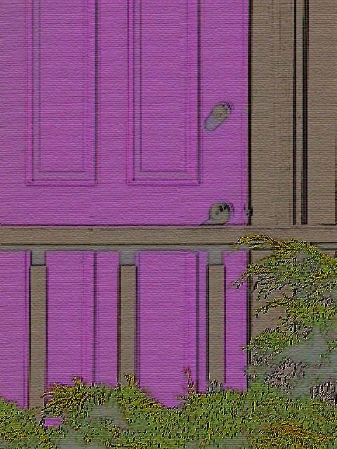 My_purple_door