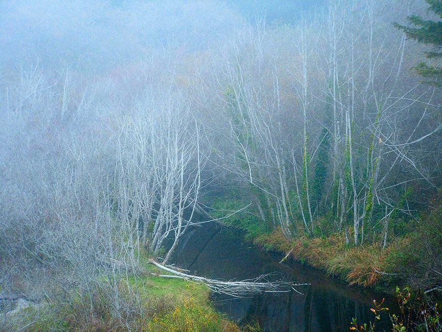 November_creek