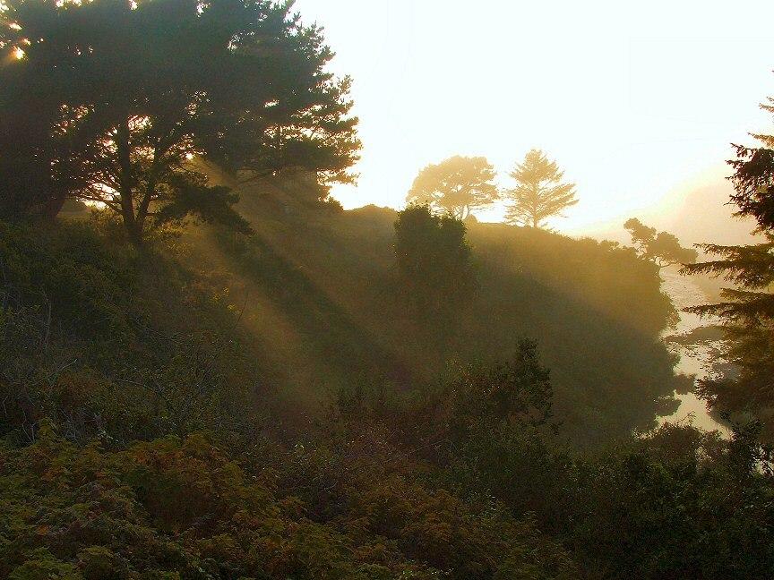 September_fog
